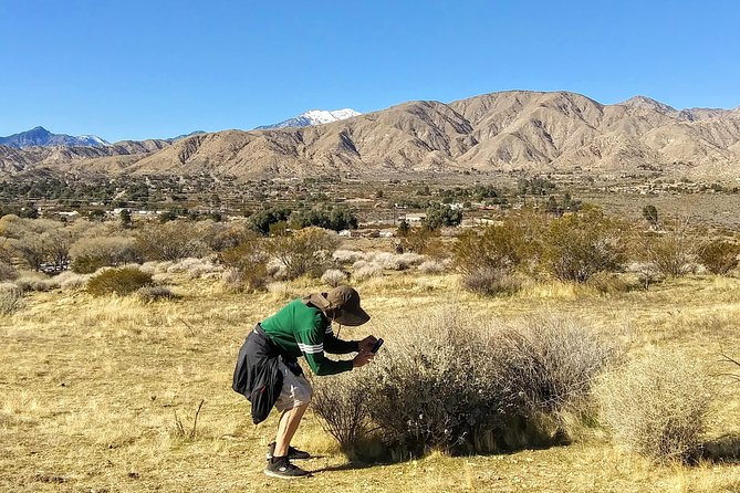 Mojave Desert Oasis Hike
