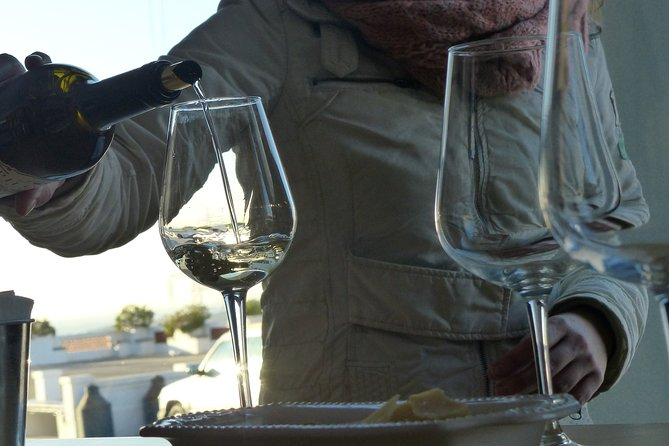 Private Tour to Arrabida and Setubal with visit to Wine Cellar from Lisbon