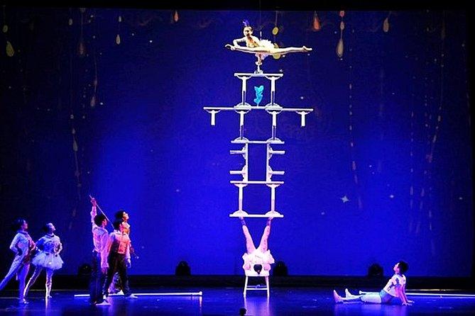 Shanghai Dinner and Acrobatics Show