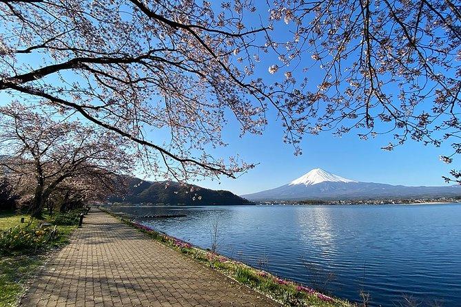 Mount Fuji Majestic Views Bike Tour on Two Lakeshores