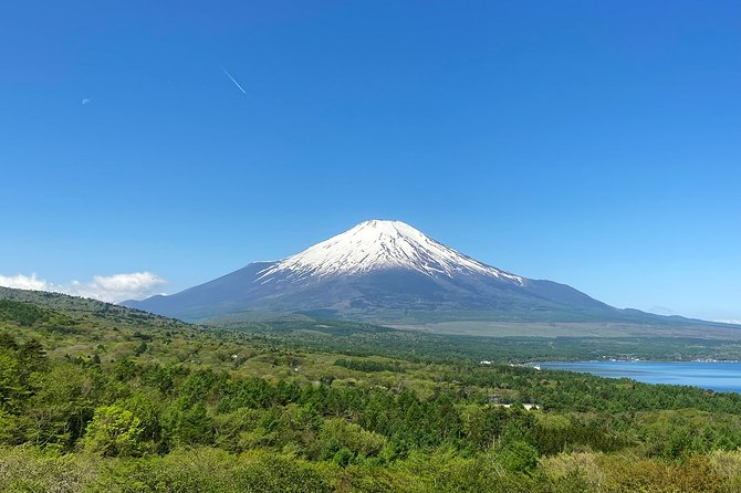 Mount Fuji Ascent Bike Tour: Ride up and down the mountain!
