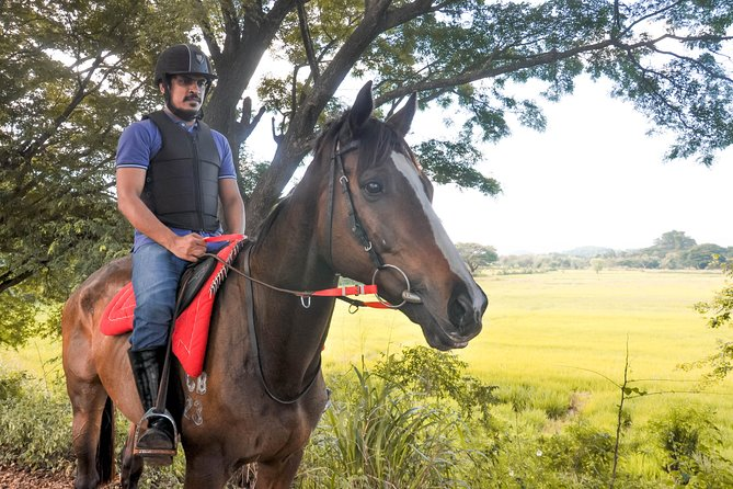 Horse Ride around a Village from Habarana
