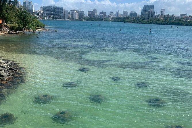 Snorkeling Tour & Gear Rental at Condado Lagoon