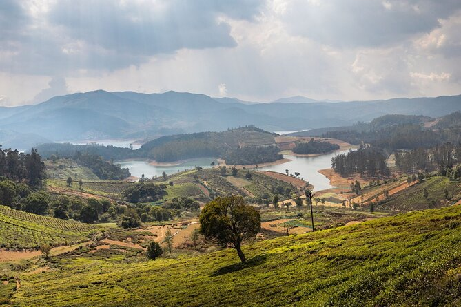 Day Trip to Coonoor (Guided Sightseeing Tour by Car from Ooty)