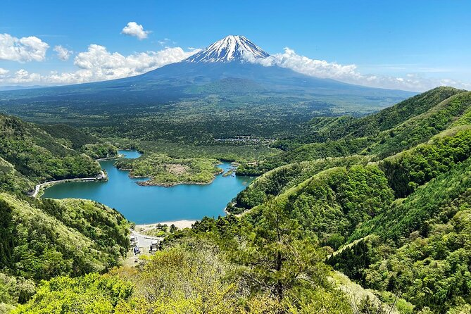 Mt Fuji views and Aokigahara Forest nature conservation hike and trash pick up