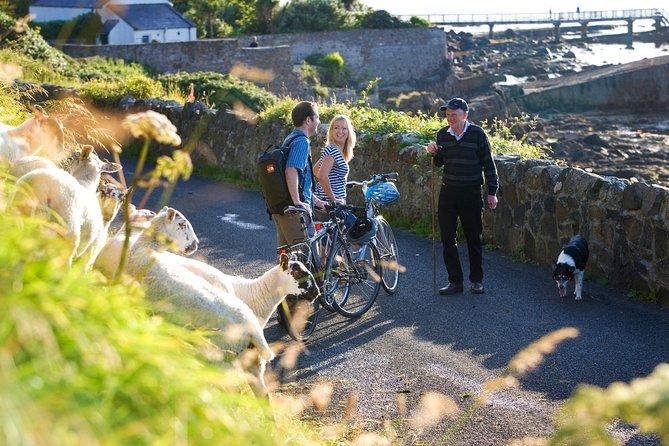 Cycle Inishbofin island. Connemara, Galway. Self-guided. Full day.
