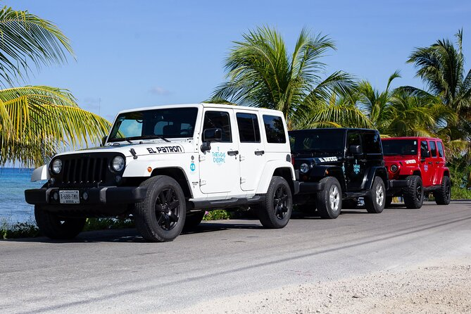 Super Cozumel Combo Snorkel by Boat and Jeep Exploration (Private)