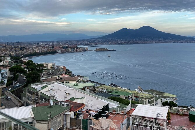 Private Half-Day Sightseeing Tour of Vesuvius National Park