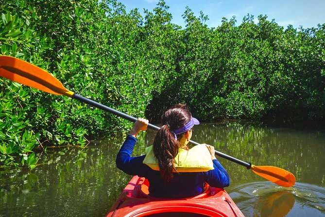 Fort Lauderdale's Tropical Kayak Tour and Island Adventure