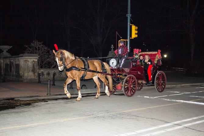 Central Park Horse Carriage Ride with photo stop (45 min)