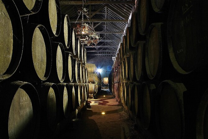 Lisbon - Private Wine Tasting Tour to the Setubal Wine Region