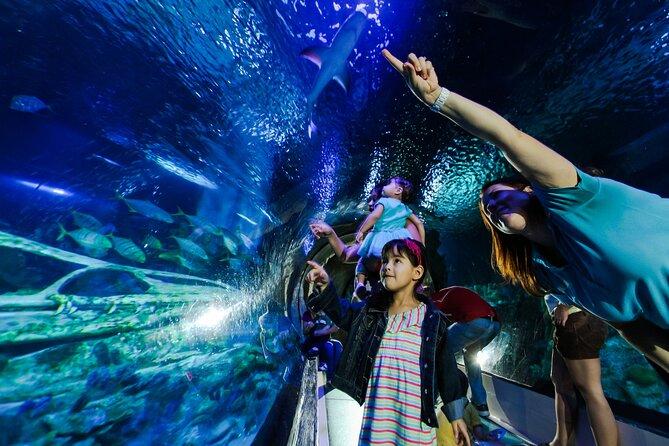 SEA LIFE Aquarium Arizona Admission Ticket