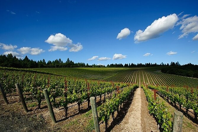 Solvang/Santa Ynez Small Group All-Inclusive Wine Tour