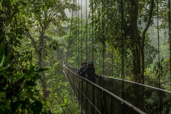 Arenal Selfguide: Mistico Hanging Bridges, La Fortuna Waterfall & Volcano Park