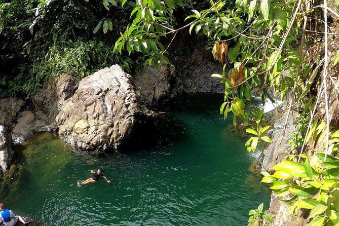 Rainforest Nature Walk, PUERTO RICO