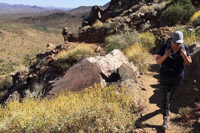 Incredible Hidden Valley Petroglyph Hiking Adventure in the Sonoran Desert