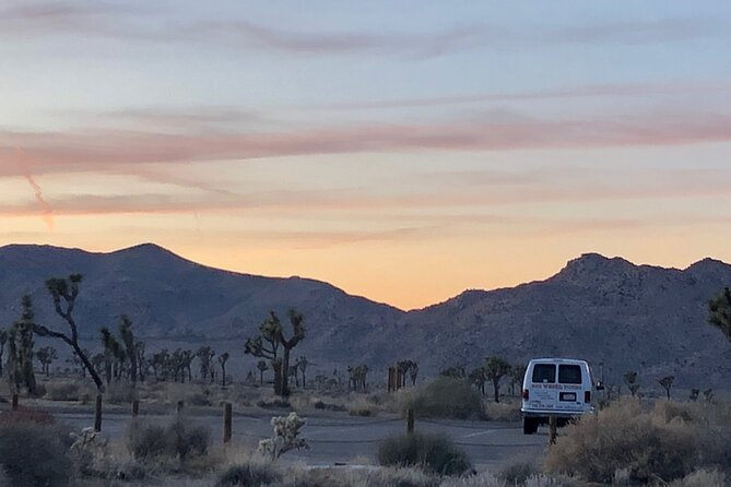 Joshua Tree National Park Driving Small Group Half Day Tour