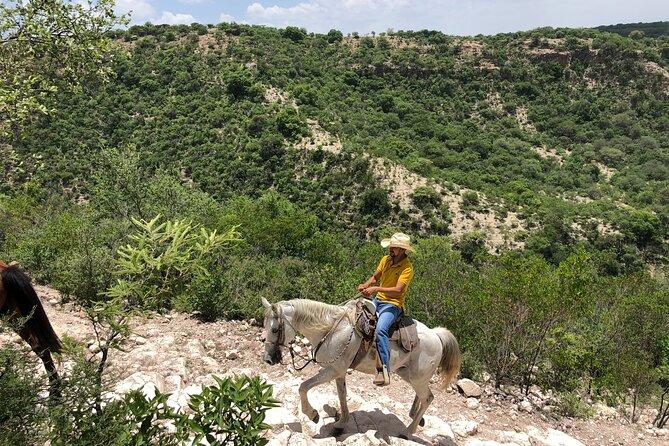 Half Day Excursion - Horseback Riding Adventure in SMA