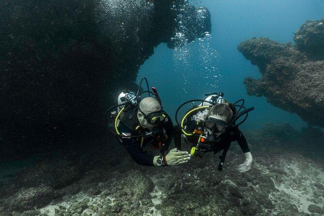 4-Hour Dive Experience in Puerto Vallarta