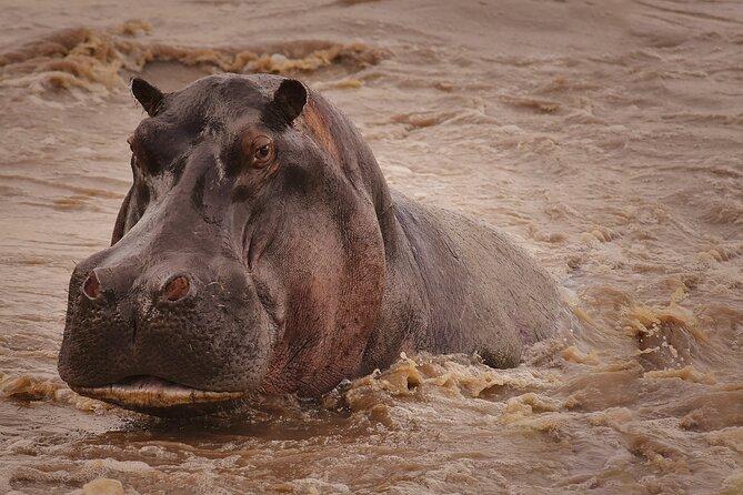 Explore Serengeti and Ngorongoro Crater in 3 days