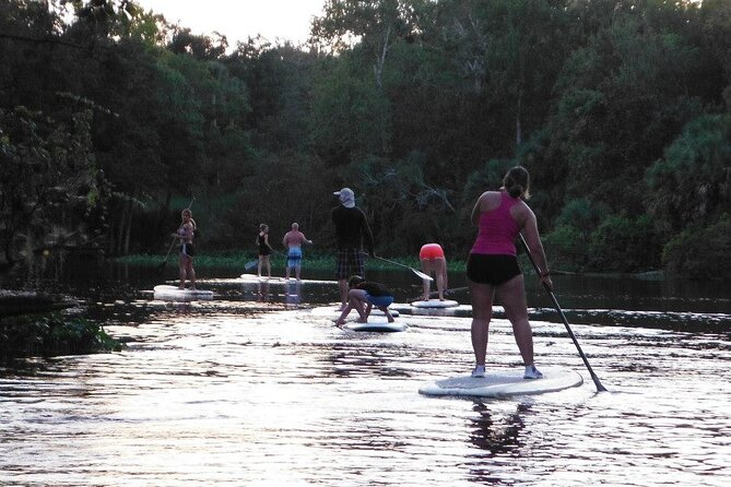 Stand-up Paddle Wekiwa Springs Adventure