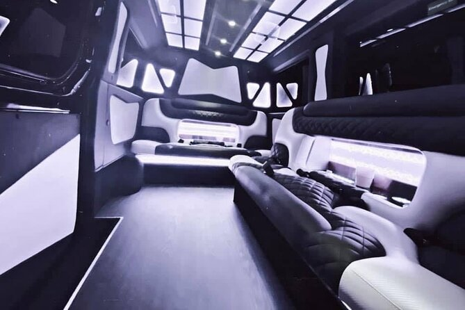 Private Tour in a 8 Passenger Mercedes Sprinter Limo Van