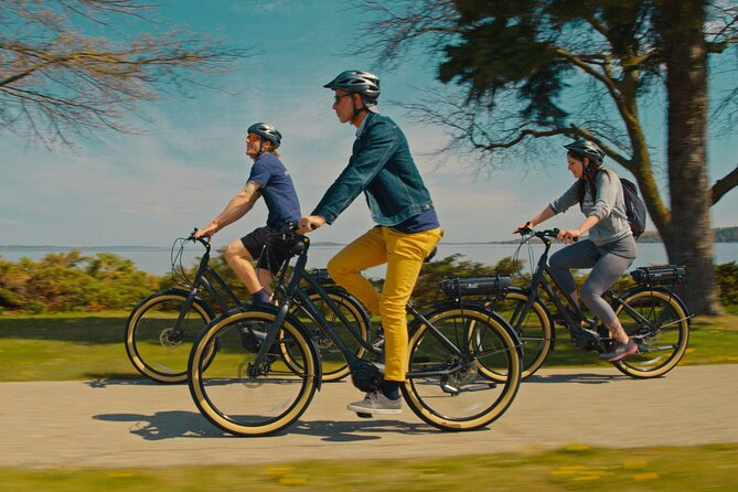 Half-Day Guided Tour of Leelanau by e-Bicycle