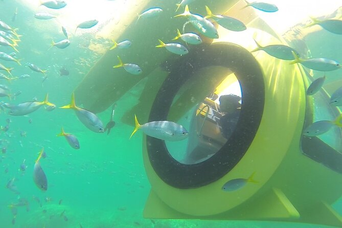 Private Semi Submarine Diving Experience in Bohol
