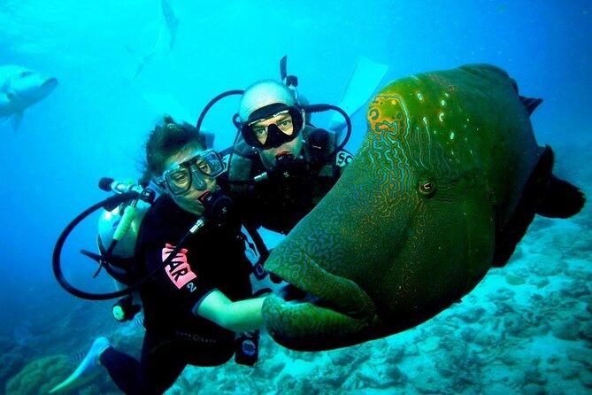 Kusadasi Scuba Diving & Snorkeling