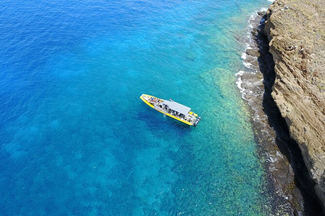 Maui Small-Group Whale Watch Adventure Aboard Brand New Super Raft