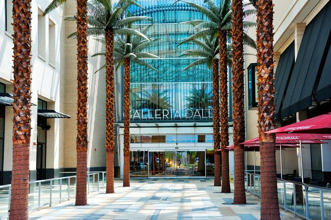 Best of Dallas Shopping Malls with Limousine Private Tour