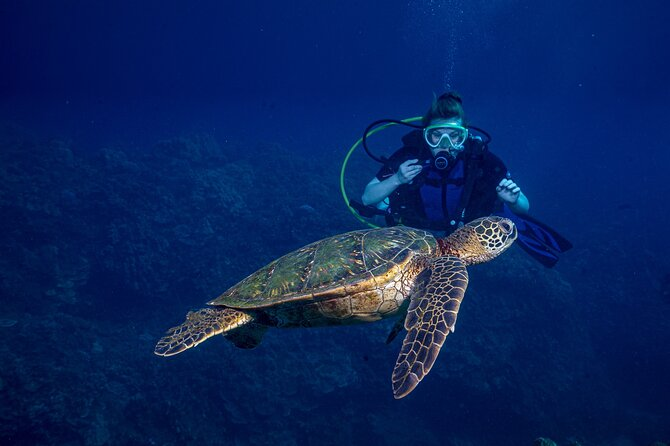 Discover Scuba Diving Class - Lahaina