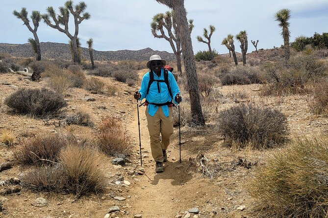 Private-24 Hour Adventure in Joshua Tree National Park