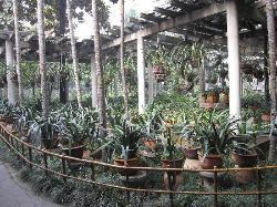 Chengdu Renmin Park
