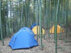 Tianmushan Scenic Aera