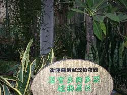 武漢植物園