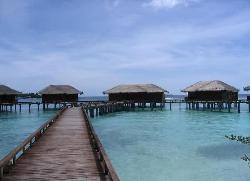 Resort Snorkeling