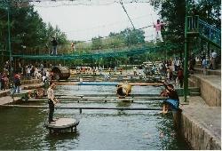 Shenyang Botanical Garden