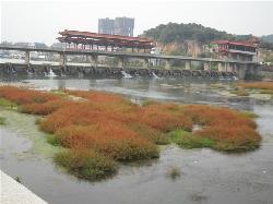 宜春湿地公园