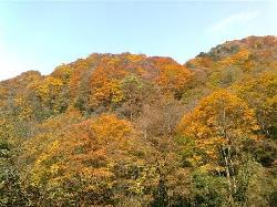 Guangwu Mountain