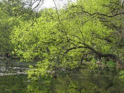 Zixia Lake Park