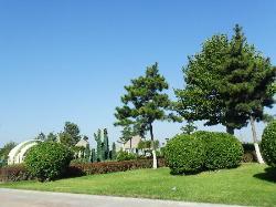 Weihai Park