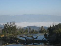 Hani Terrace