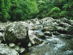 Sanbai Mountain