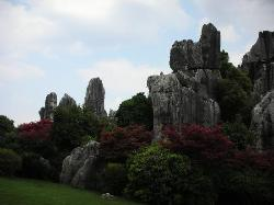 Stone Forest UNESCO site