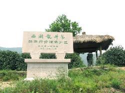 Longjingwencha Scenic Resort