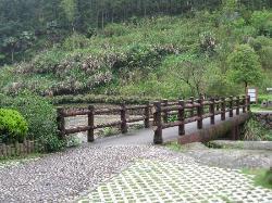 Baishuiyang Scenic Resort