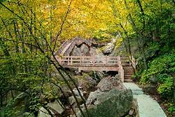 Mt. Tongbai Scenic Resort