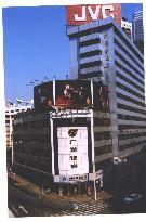 新粵新酒店
