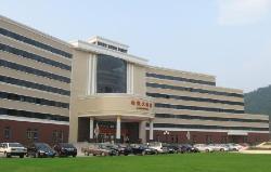 Chibi Hotel